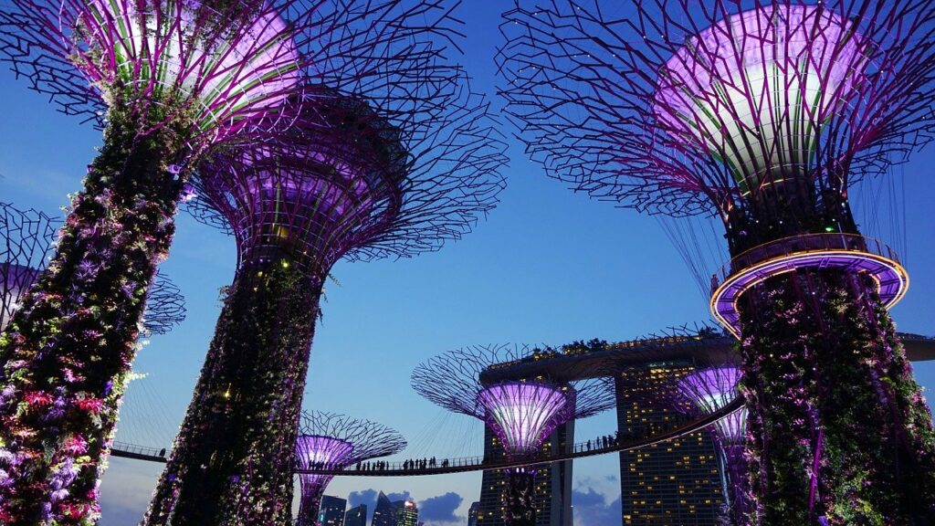 garden by the bay, singapore, night